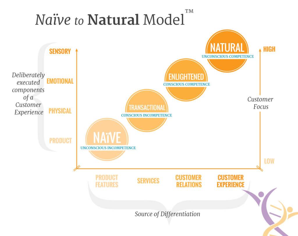 N2N-Map-V2