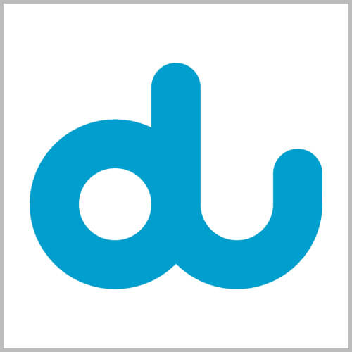 du customer experience case study