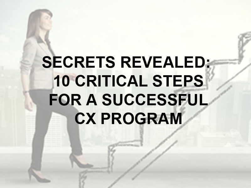 10 steps to a successful CX Program White Paper