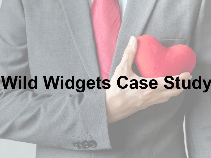 Wild Widgets Case Study white paper