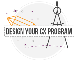 custome experience user design program