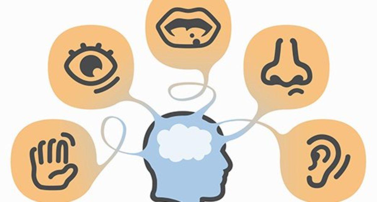 Exploit Your Customer's Senses! | CX Consulting