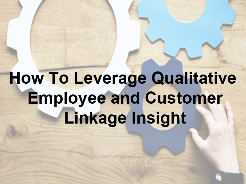 How To Leverage Qualitative Employee and Customer Linkage Insight White Paper